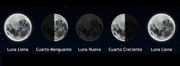 Las fases lunares y cómo trabajar con su energía | Duendes Avalon