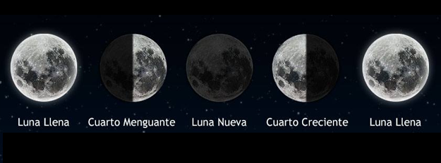 Magia Lunar en Luna Creciente | Duendes Avalon